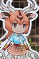 [東武動物公園][けものフレンズ][アクシスジカ] (11) アクシスジカ