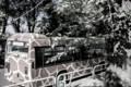 [東武動物公園][けものフレンズ][バス] ジャパリバス