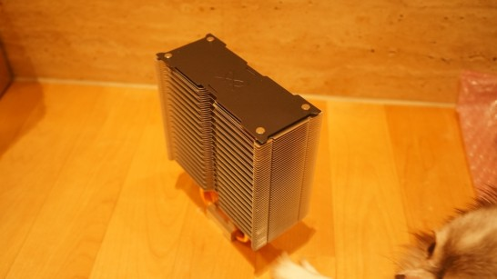 DSC03464