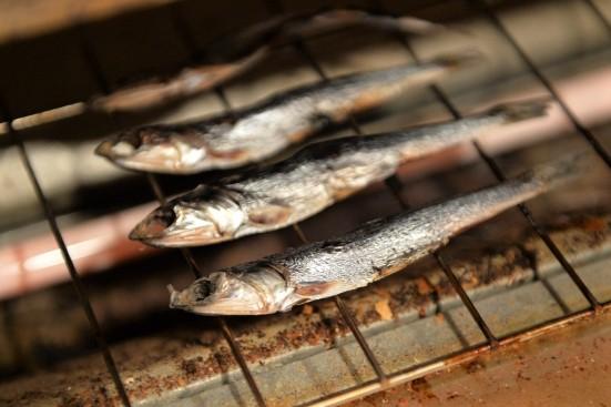 焼き魚 イワシ