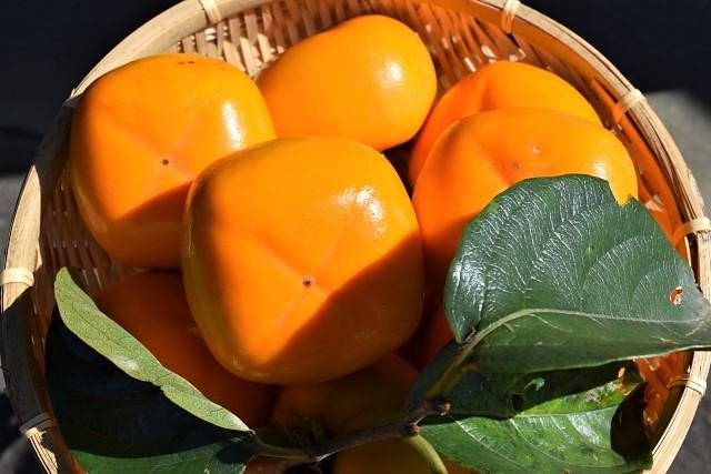 秋の味覚「柿」