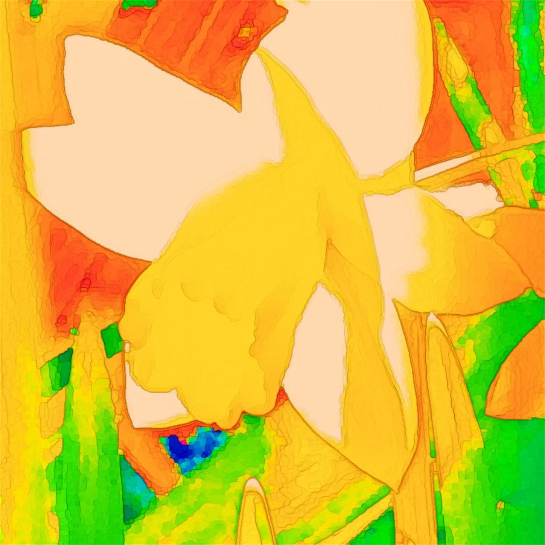 f:id:raspberrychoco:20200319110448j:image
