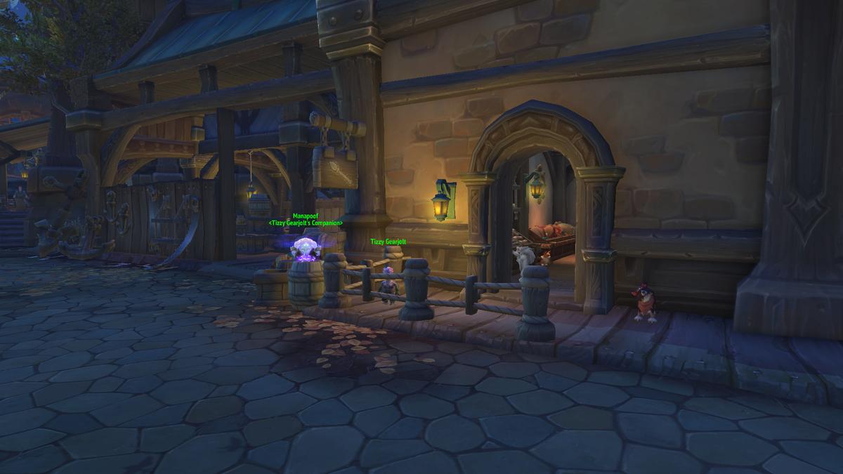 World of Warcraftのペットショップの画像