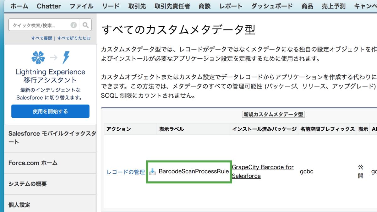 「BarcodeScanProcessRule」というカスタムメタデータ型が作成されます