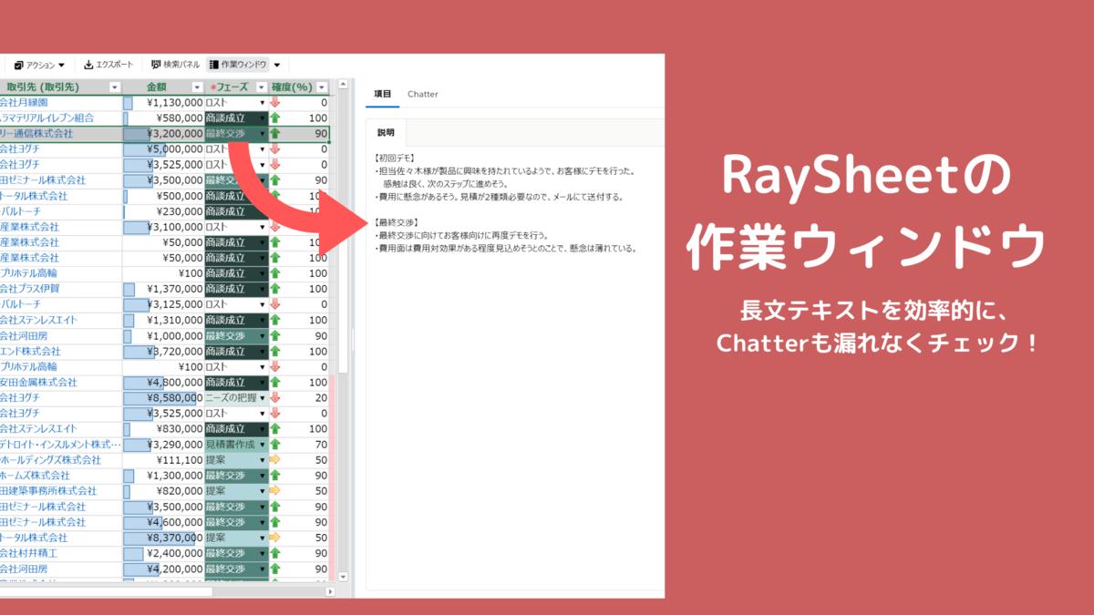 RaySheetの作業ウィンドウ