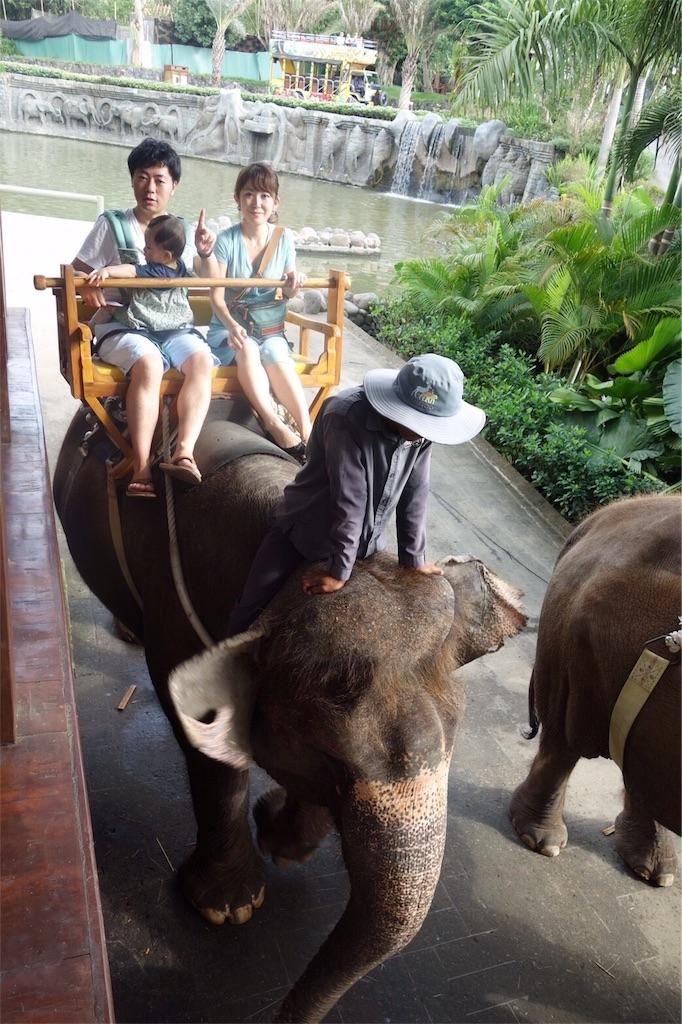 balizoo 赤ちゃん 象乗り