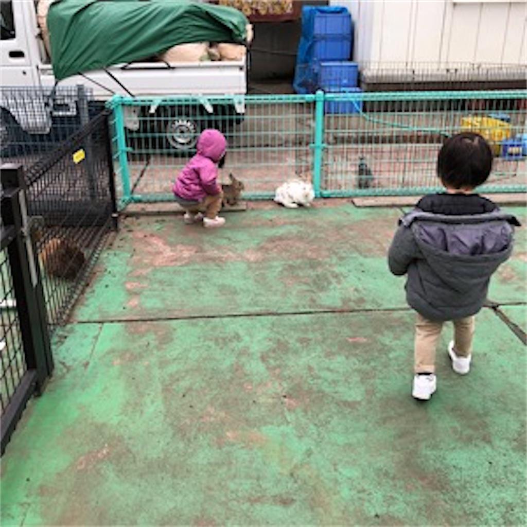 碑文谷公園 小動物ふれあい広場 子供遊び場