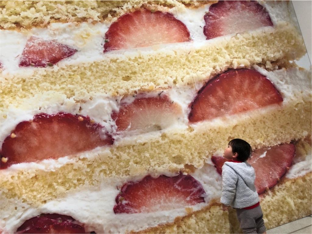 巨大ショートケーキ オブジェ