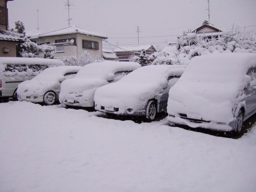 実家付近の積雪状況