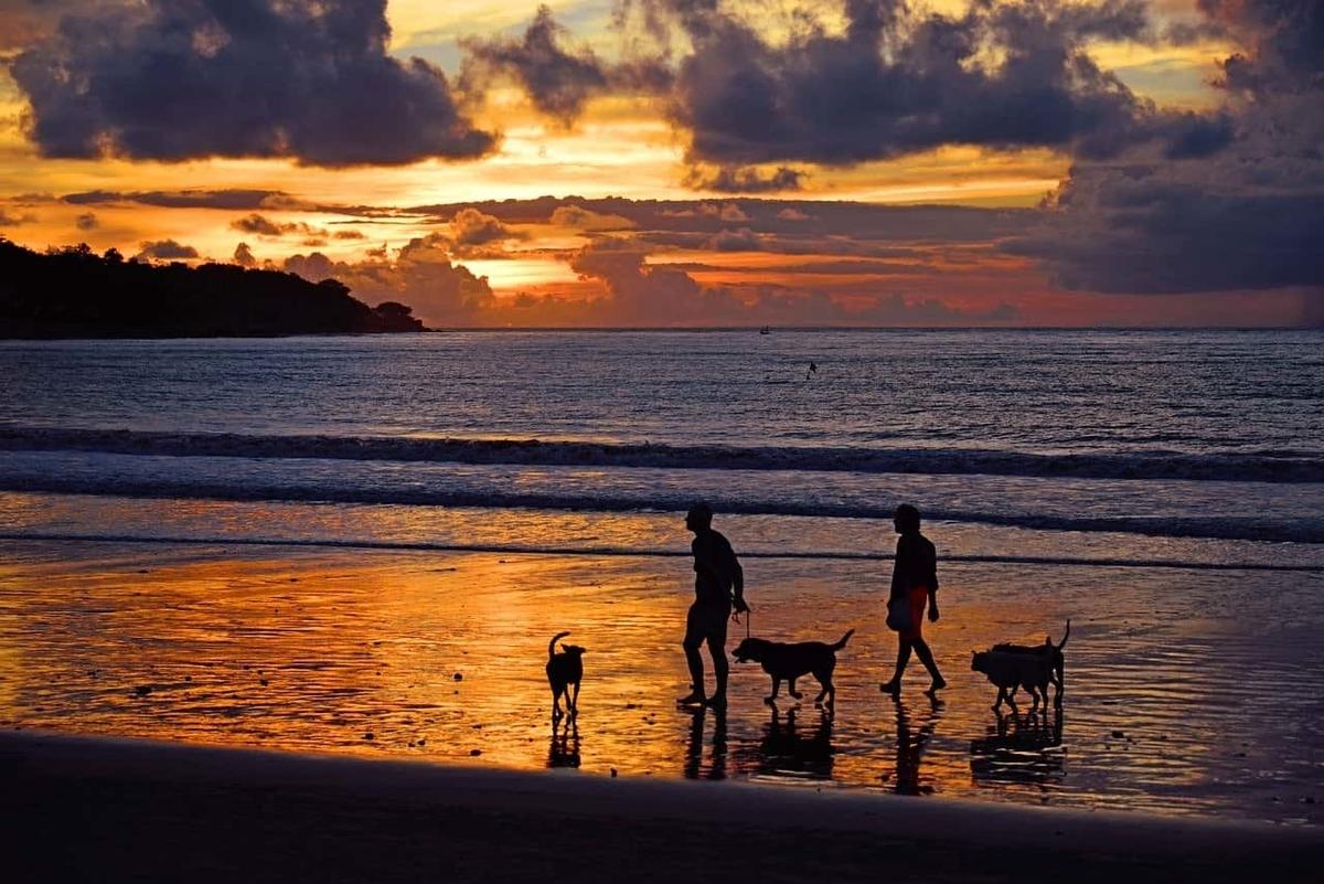 海岸 夕陽