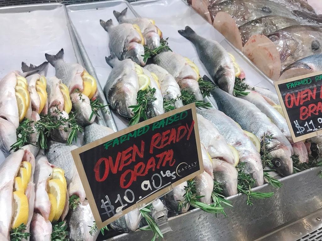 魚セクション