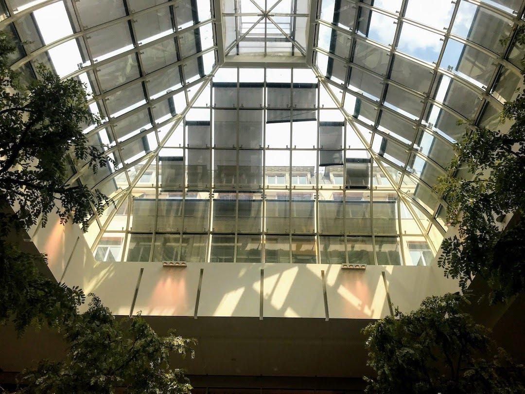 天井がガラスで、明るい店内