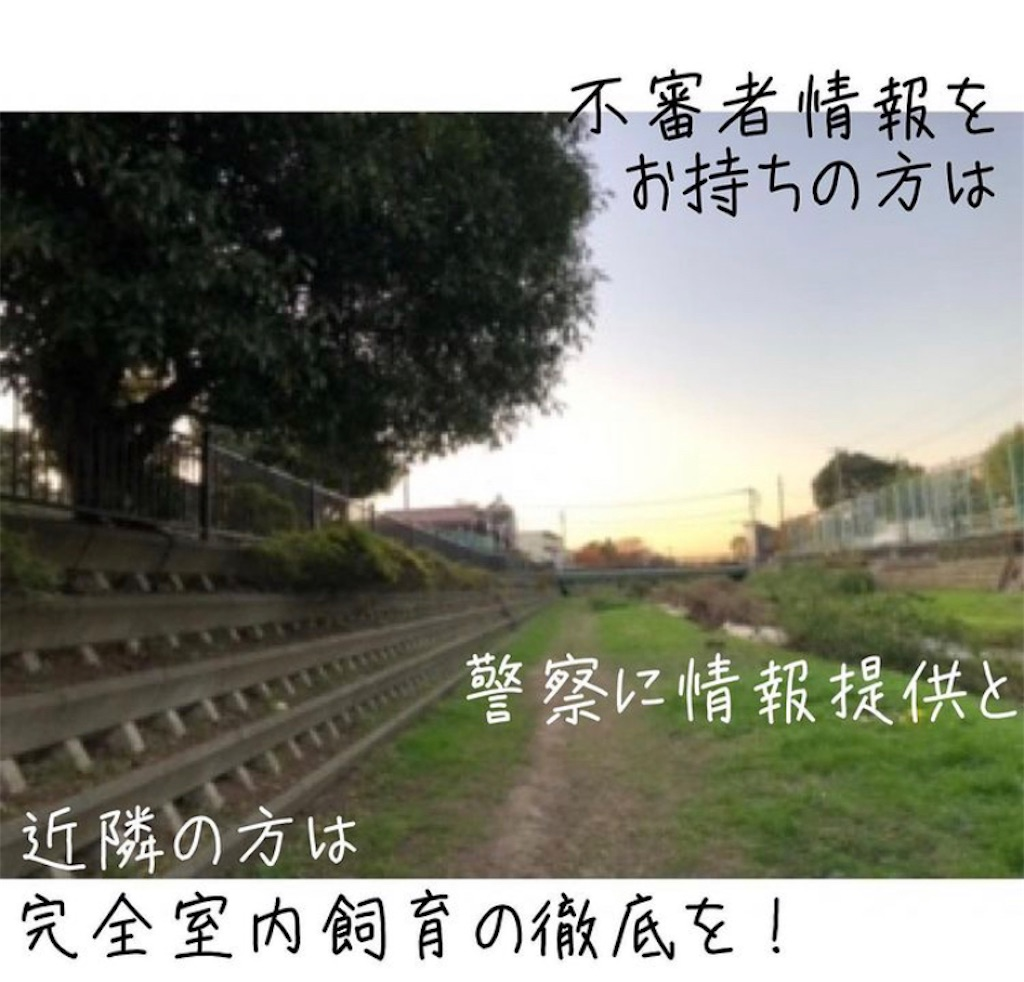 f:id:rebornyuko:20201125223739j:image
