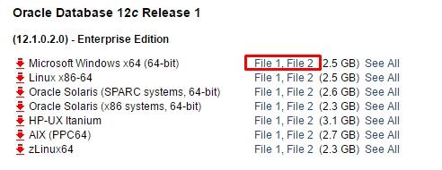 Oracle12c64bit