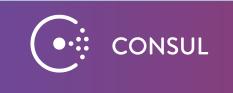 consul-mini-logo