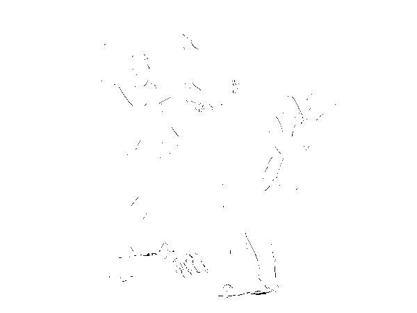 f:id:reddishgrey:20170915094331p:plain