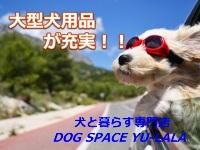 犬と暮らす専門店 DOG SPACE YU-LALA