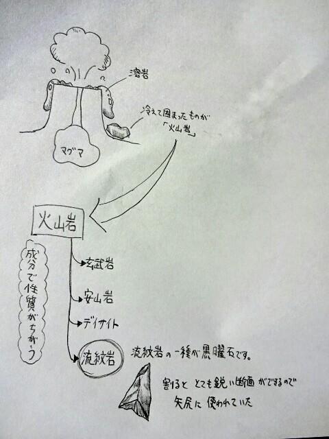 f:id:regenerationderhydra:20151101060241j:image