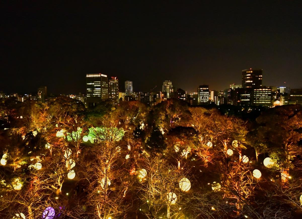 チームラボ 福岡城跡 光の祭 福岡県 福岡市 アート