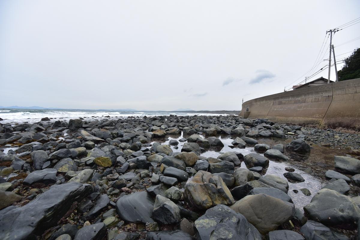 潮が引き庚申塔までの道ができていた