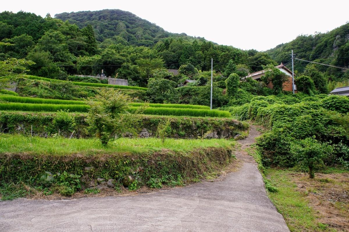 福寿寺がある豊後高田市平野 陽平の集落