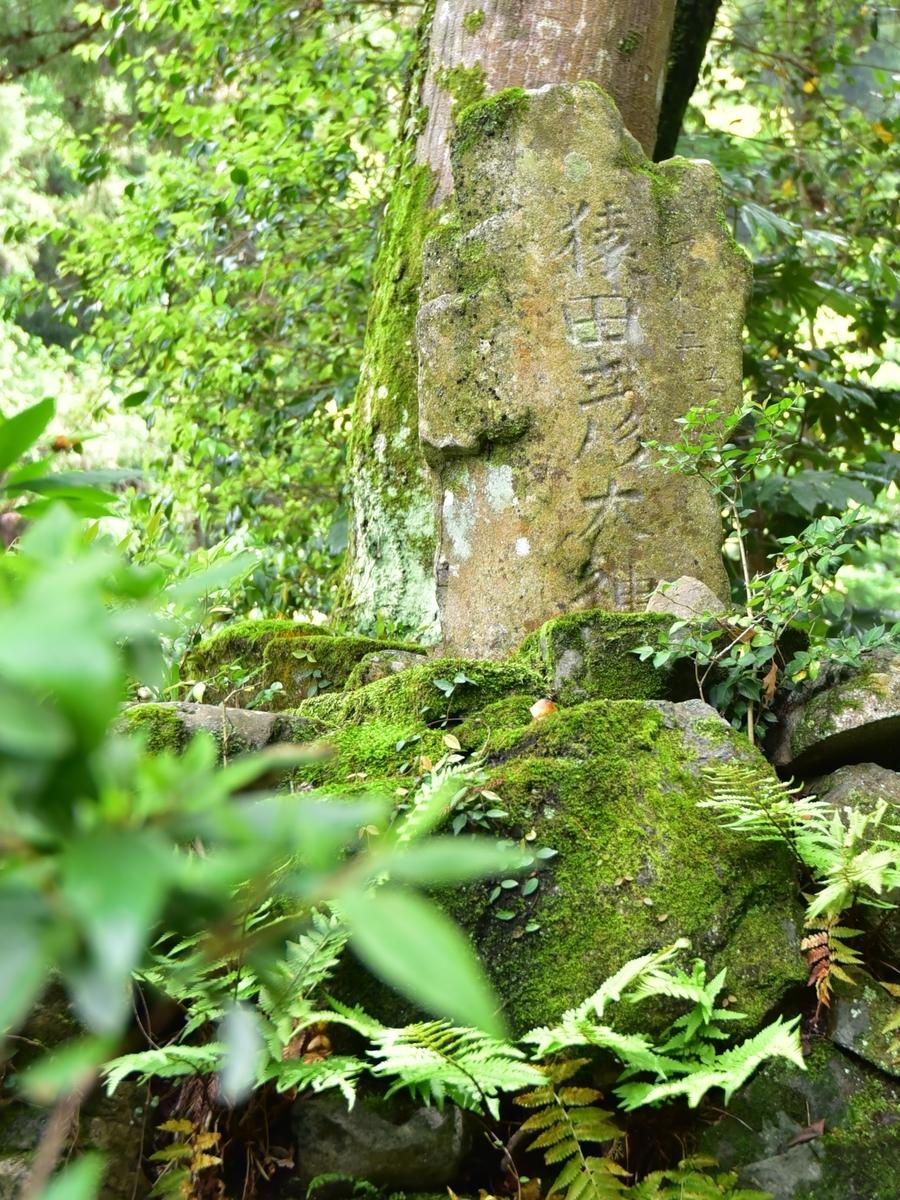 西大野八幡神社の庚申塔