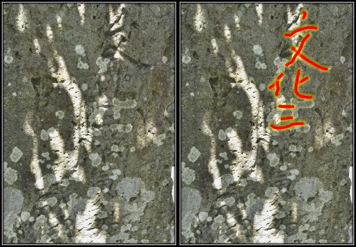 f:id:regenerationderhydra:20210510211014j:plain