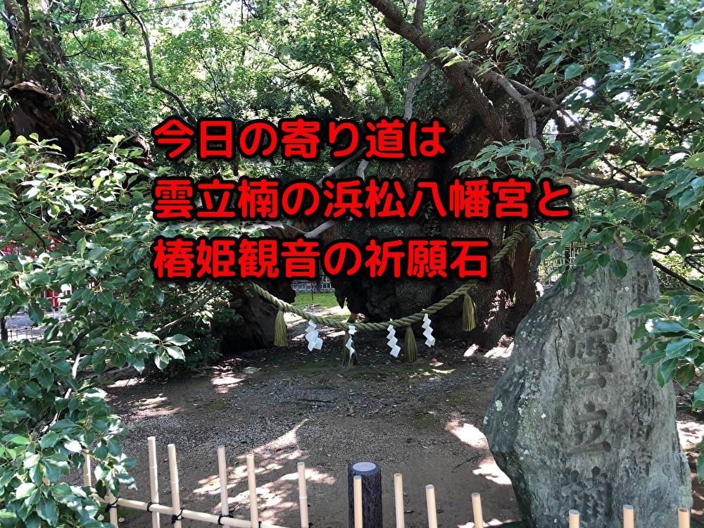 今日の寄り道は雲立楠の浜松八幡宮と椿姫観音の祈願石