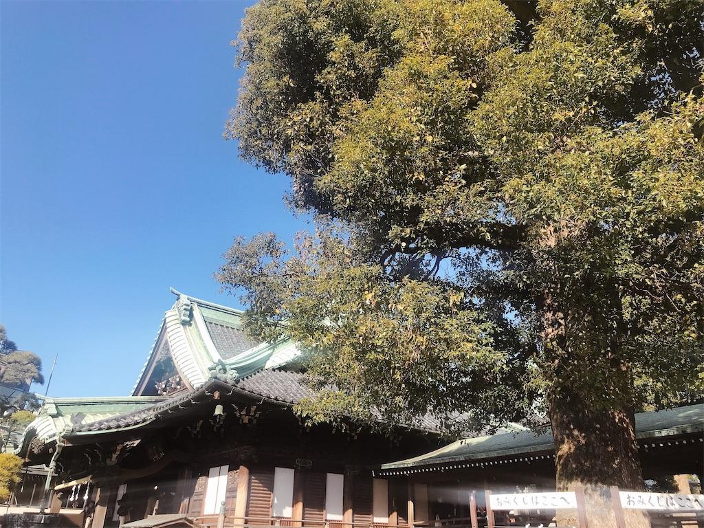 f:id:rei-tokyo:20200212013440j:image