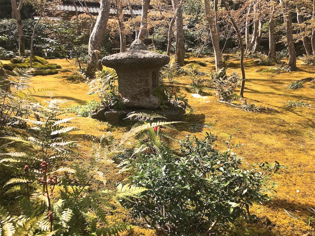 f:id:rei-tokyo:20200213111253j:image