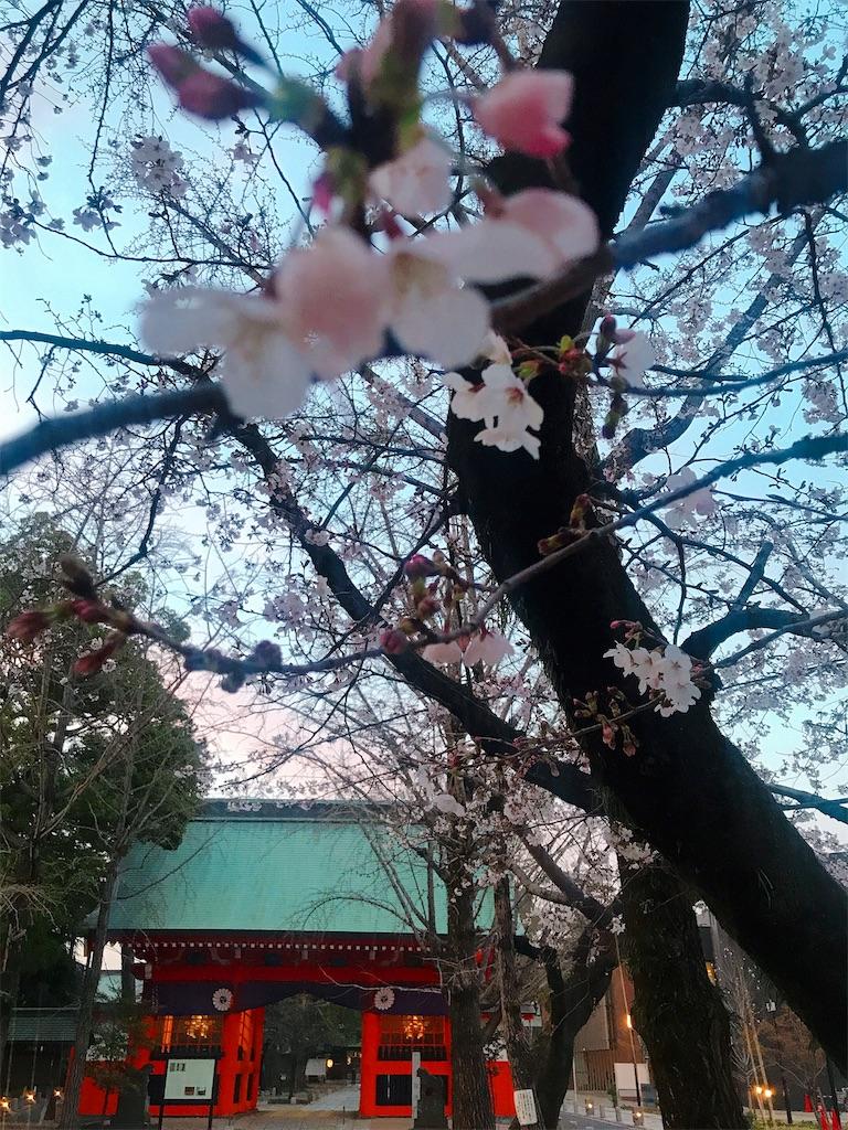 f:id:rei-tokyo:20200322232118j:image