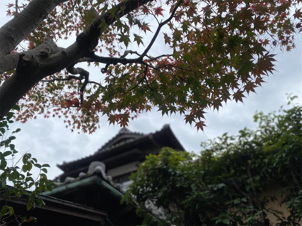 f:id:rei-tokyo:20201202214600j:image