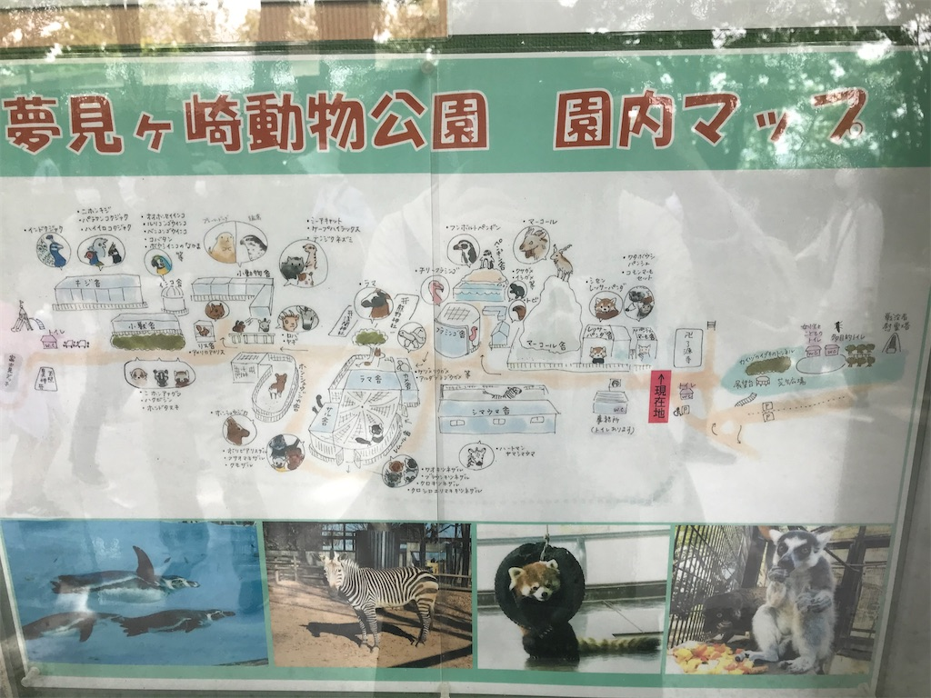 f:id:rei-tokyo:20210504210203j:image