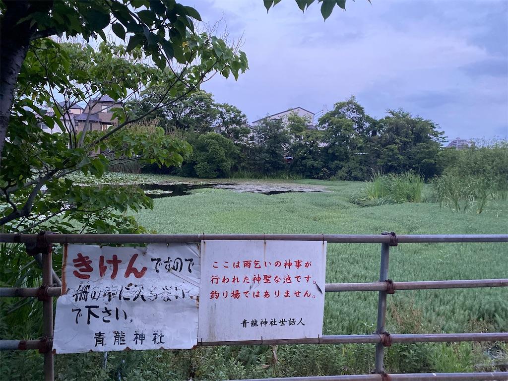 f:id:rei-tokyo:20210719190514j:image