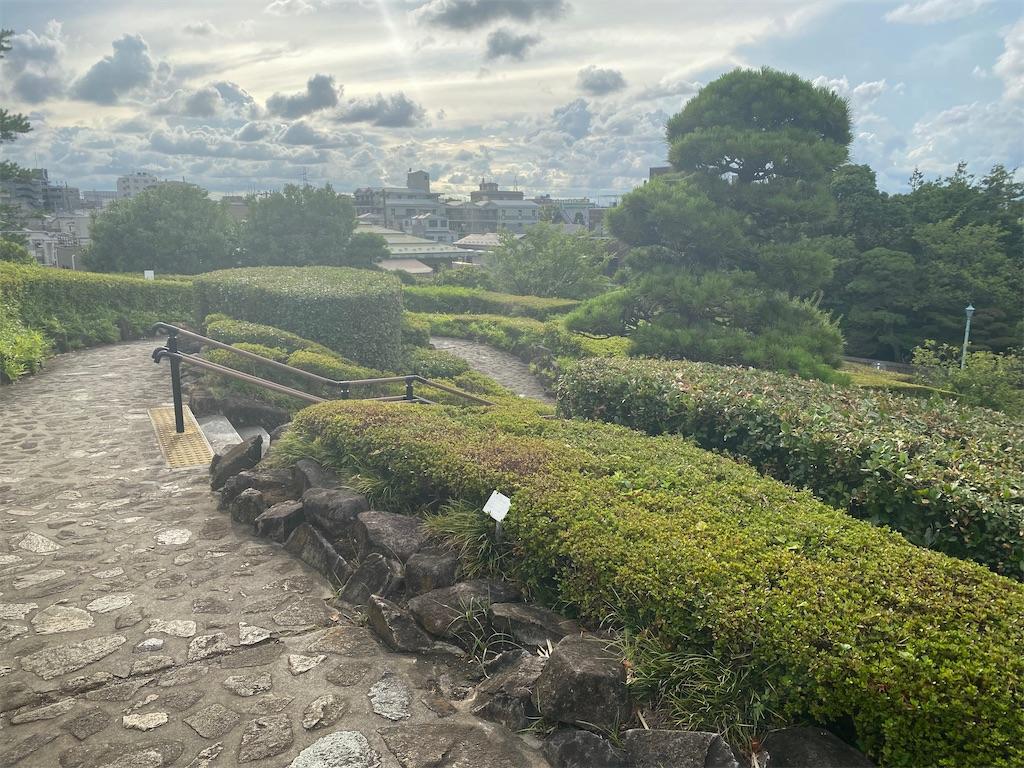 f:id:rei-tokyo:20210822105227j:image
