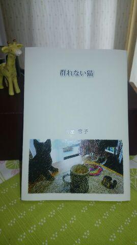 f:id:rei-tsuchiya:20160529170448j:plain