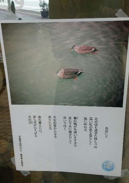 f:id:rei-tsuchiya:20170529101005j:image