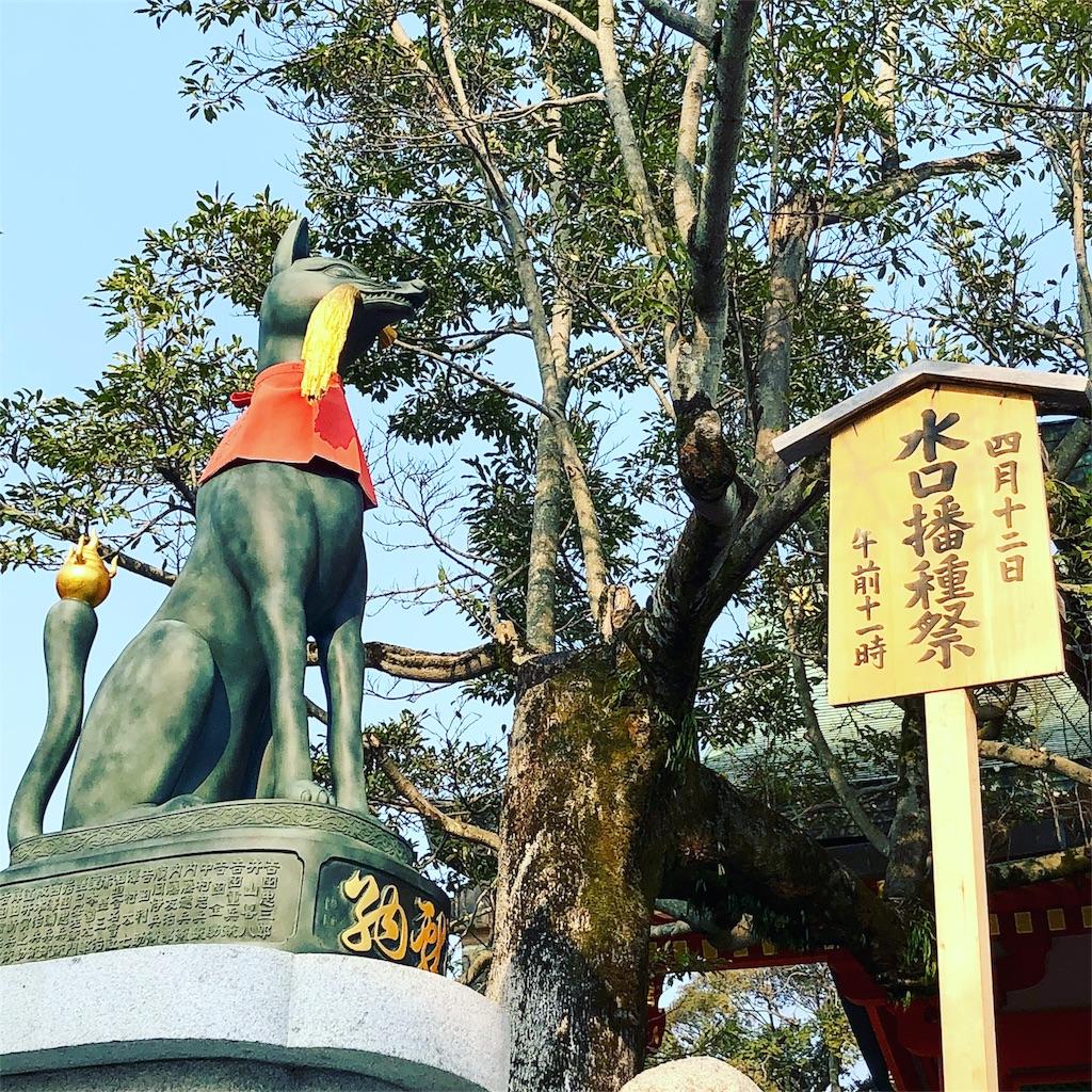 伏見稲荷 狐 水口播種祭 稲の守り神
