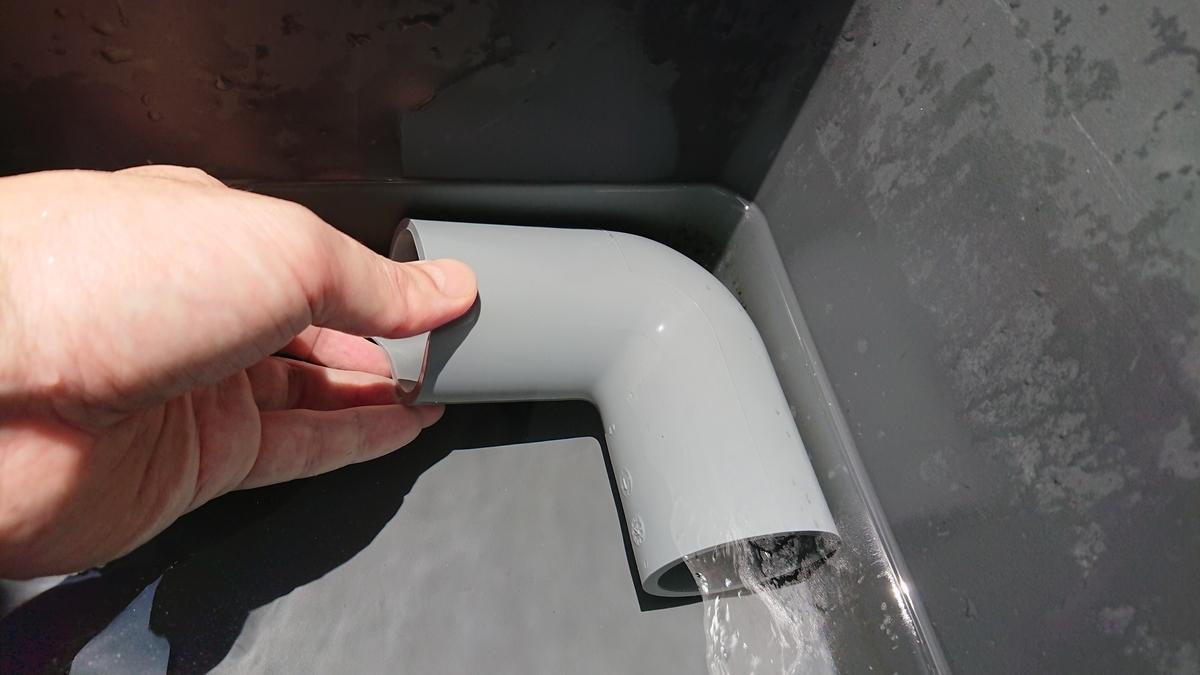 水道 水 ザリガニ
