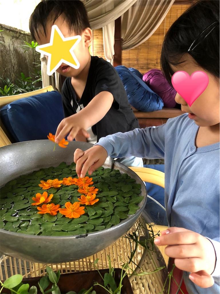 f:id:reiko-mom-arch:20200109121743j:image