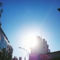 [吉祥寺 朝日 太陽 青空 ] 吉祥寺、井の頭通りのまぶしい朝日