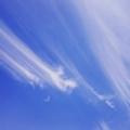 [空 イマソラ 青空 朝 雲 ] きれいな青空