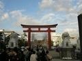 [神奈川]鶴岡八幡宮 若宮大路 段蔓の鳥居