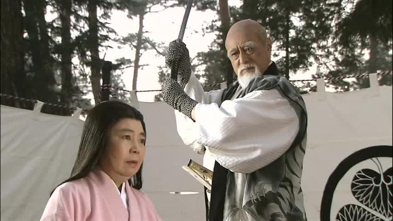 「葵徳川三代」より