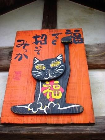 猫雑貨と珈琲の店 滑川/20070426