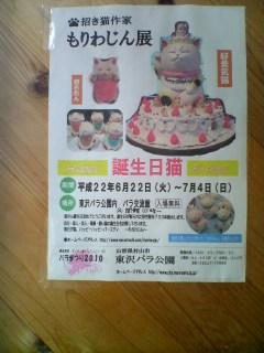 もりわじん誕生日猫展(東沢バラ公園バラ交流館)/20100703