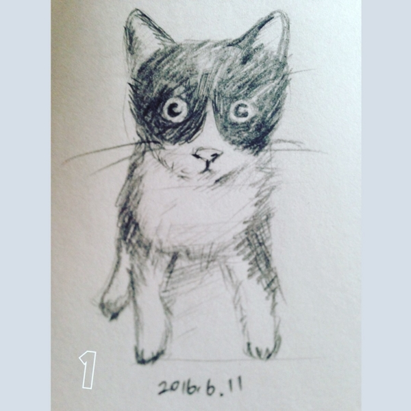 [2017][#mydrawing][一日一猫絵][猫絵]