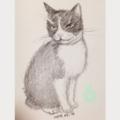 [2017][#mydrawing][一日一猫絵][猫絵]17008/170109