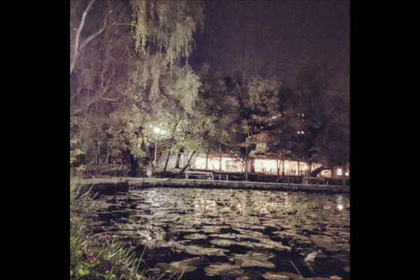 池の向こうの建物から光が漏れている