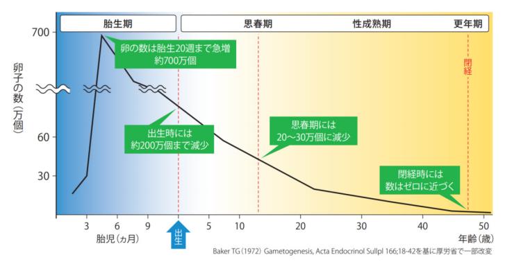 図2: 年齢の効果を誇張した「卵子の数」のグラフ